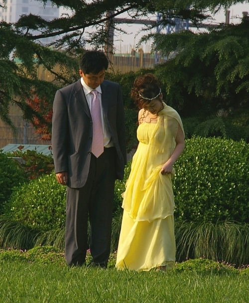 The_bride_wears_yellow